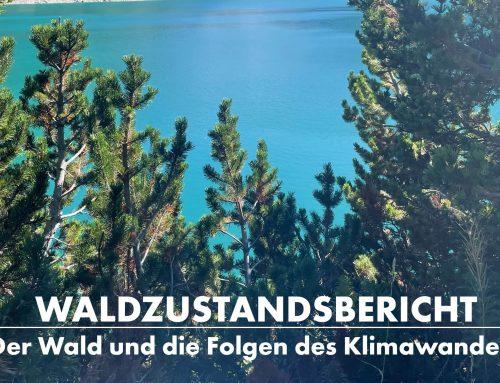 Waldzustandsbericht